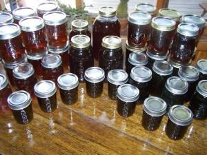 Adirondack Maple Syrup