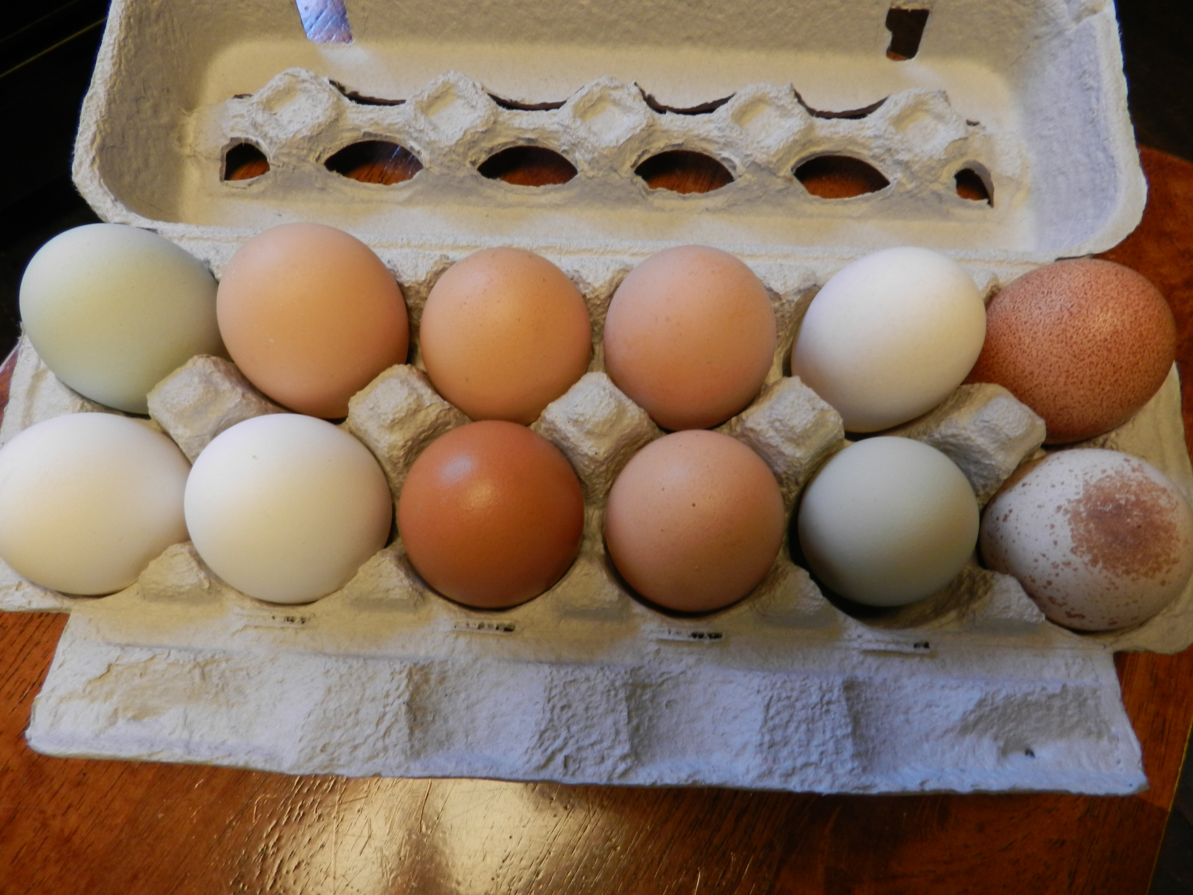 how to cook fresh eggs