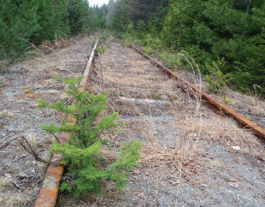 Tahawus Rail Line (Phil Brown Photo)