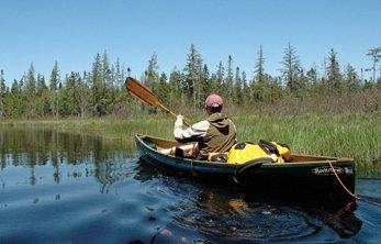 Phil Brown paddles Shingle Shanty Brook in the Adirondack Park