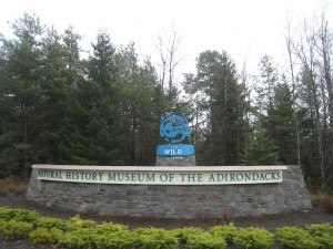 WildCenter_new