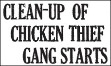 Chicken Thief headline 1926