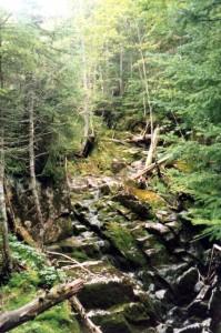 Streambed to Nye summit