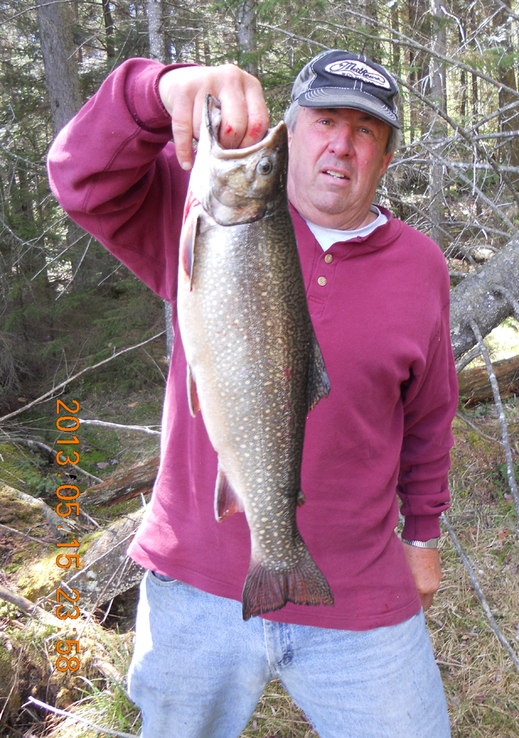 Nys record brook trout caught in silver lake wilderness for Trout fishing ny