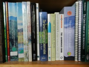 Adirondack Book Shelf