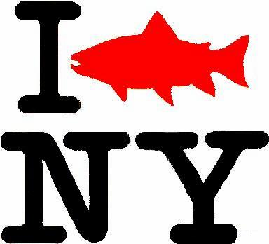 Free fishing days this weekend the adirondack almanack for Free fishing license ny