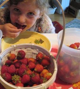 strawberriesfromgarden2_new