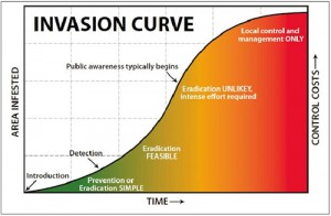 invasive_curve