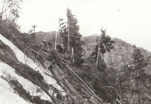 Example of logging practices 1922