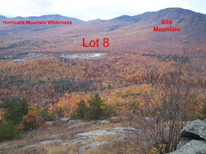 View of NYCO from Mt Fay