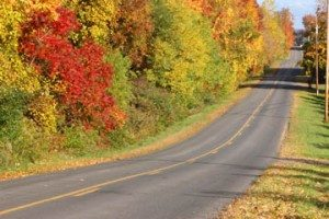 GFP_2053autumnbyway725