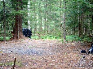 Hunter campsite near Threemile Beaver Meadow