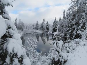 ed_kanze_winter