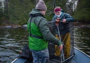 Follensby Pond Lake Trout Survey (Erika Edgley - TNC Photo)