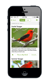 Merlin Cornell Bird App