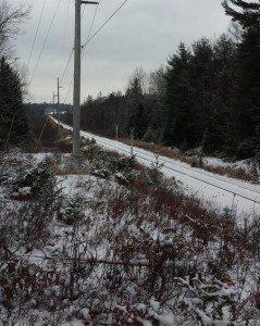 The Adirondack Rail Corridor in Ray Brook (Jack Drury Photo)
