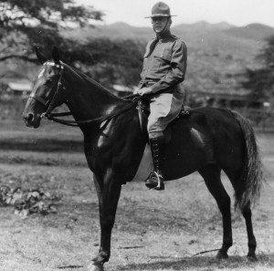 Fox Connor on Horse