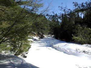 Otter Creek Horse TRails in winter