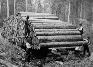 log-measurement-1900_0