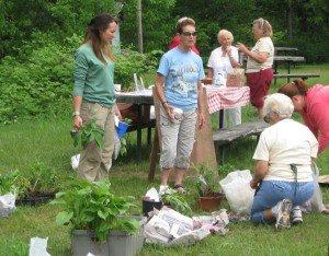 Garden Plant Swap