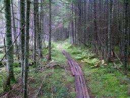 Northville Placid Trail
