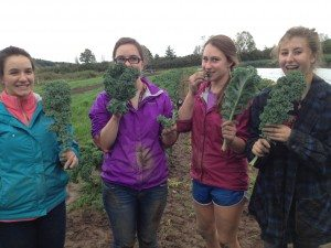 Saranac Lake students snack on kale while on a field trip to Fledging Crow Farm