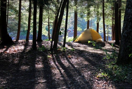 Northampton Beach campground