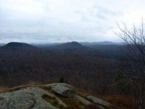 View of Coney Mtn from Goodman Mountain (APA Photo)