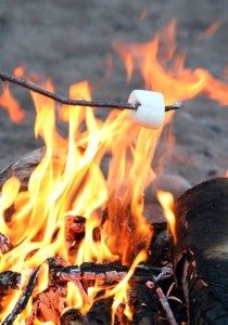 Roasting Marshmallow by Flickr user Nina Hale