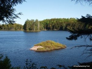 Small island on Evergreen Lake