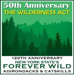 Adk Park Institute To Fete Wilderness 50th Organizers