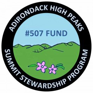 Summit Steward 507 Logo