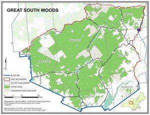 Great South Woods Adirondacks