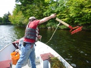 Lenny Croote uses the rake toss method to survey for aquatic invasive plants.