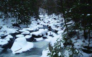 Santanoni Brook by Phil Brown