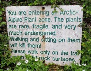 Alpine Zone Sign