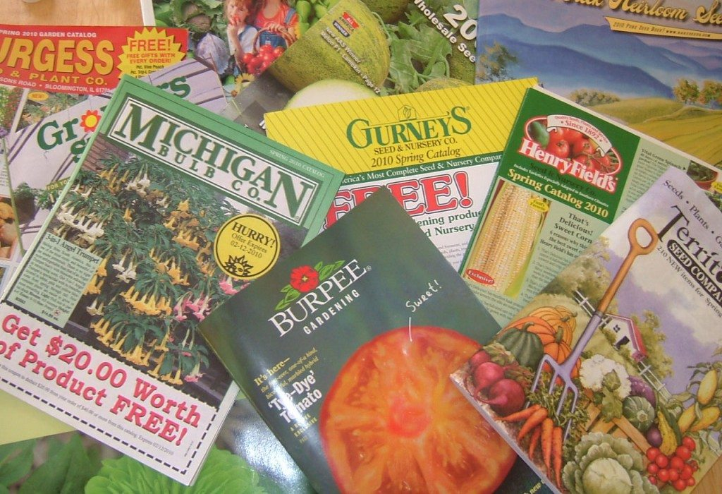 Seed catalogs reading between the lines the for Gardeners supply company catalog