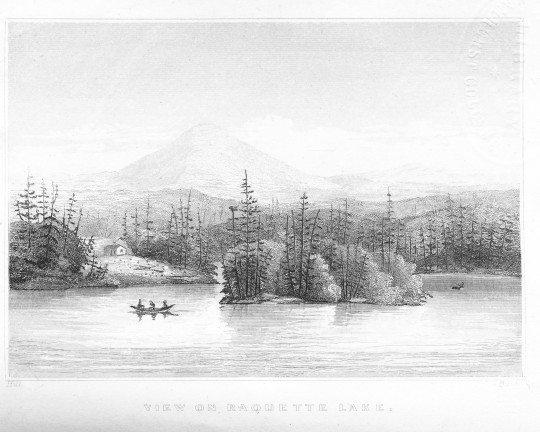 1849 Birch Pt sketch