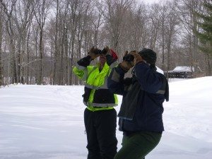 Tom and Lenny use binoculars to scan tree bark for invasive insect exit holes.  Emerald ash borer exit holes are shaped like a D while Asian longhorned beetle exit holes are round and the size of a dime.