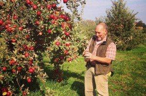 Saratoga Apple1