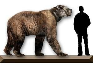 short-faced_bear-Wikipedia
