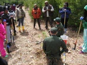 DEC Forest Rangers demonstrate for the group
