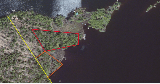 tree cover search areas