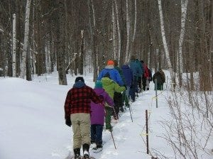 Sugar Maple Tourism