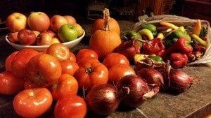 Adirondack Farm Produce - Photo by Shannon Houlihan