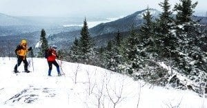 Snowshoers reach the open summit of Coney Mountain near Tupper Lake (Nancie Battaglia)