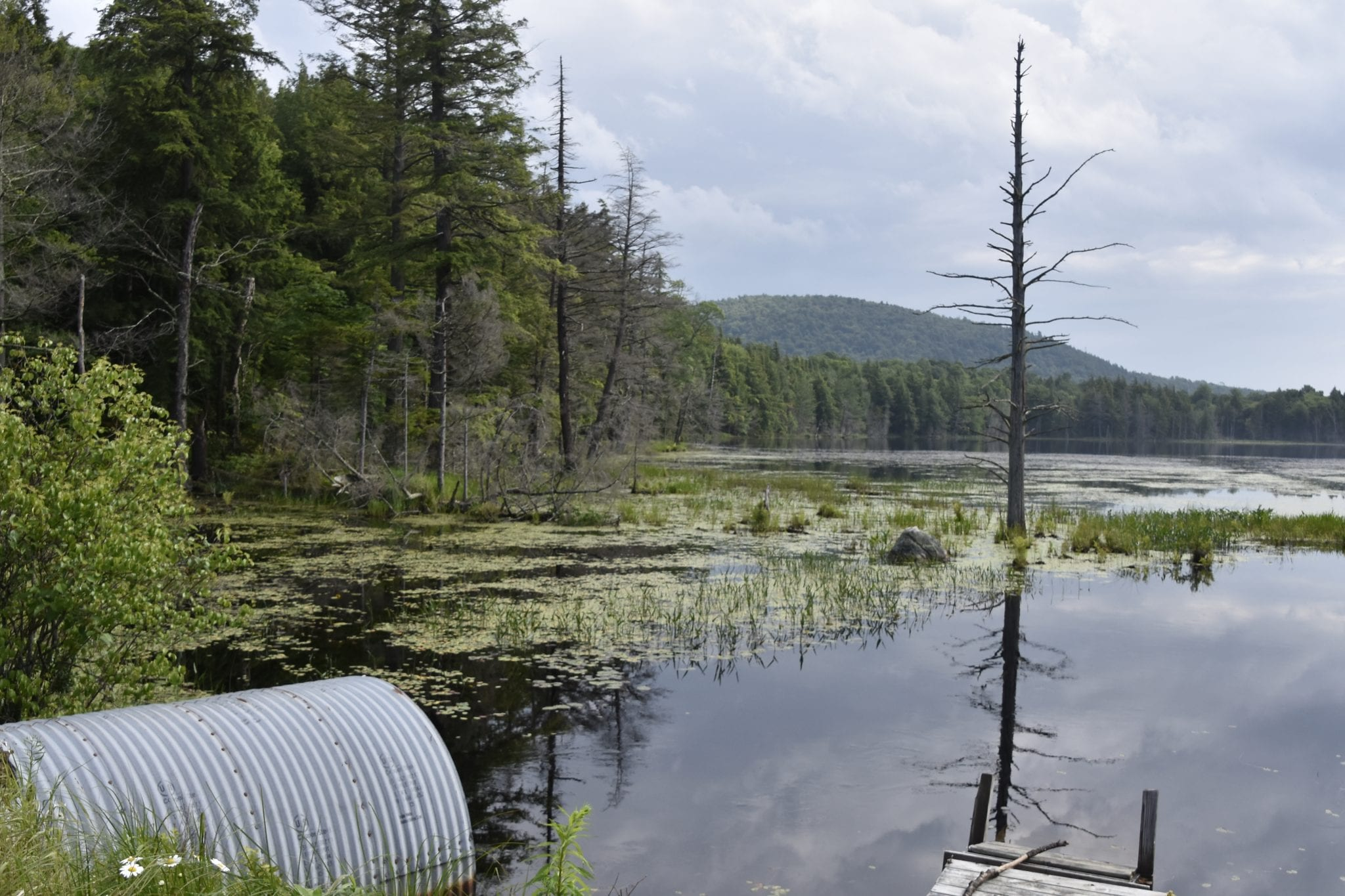 Essex Chain Lakes Tube (Adirondack Wild Photo)