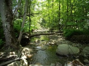 Indian Brook courtesy The FUND for Lake George.