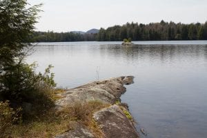Pine Lake near Essex Chain