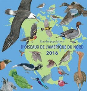 north american birds 2016